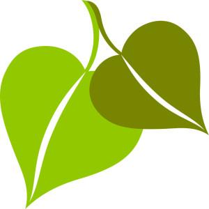 leaf0709